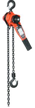 Where to rent Chain Hoist - 3 4 Ton  10  Chain in Iowa City IA